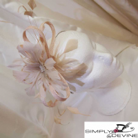 Champagne /latte Wedding Day Fascinator NR330/11427/latte